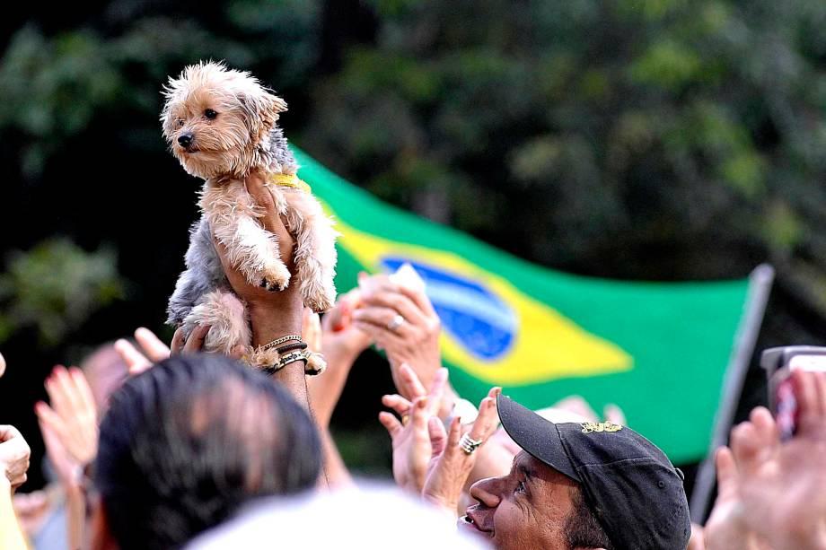"""Na Avenida Paulista, um manifestante levou seu cão a um dos protestos organizados pelos movimentos """"Vem Pra Rua"""" e  MBL (Movimento Brasil Livre), que aconteceram neste domingo pelo Brasil"""