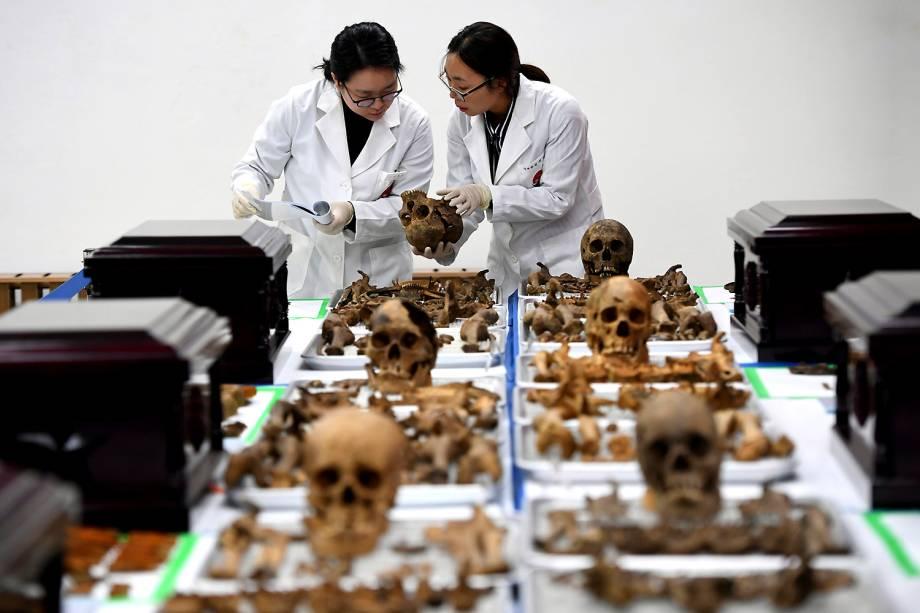 Membros da Agência de Identificação e Recuperação KIA (Killed in Action), analisam ossaturas de soldados chineses mortos na Guerra da Coréia, que aconteceu entre 1950 e 1953 - 20/03/2017