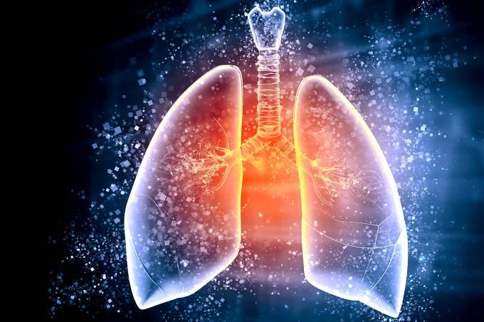 Ilustração esquemática de um pulmão humano