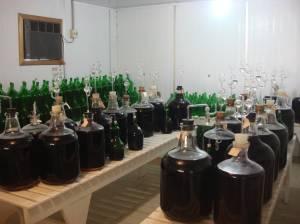 Bebidas com válvula de Mueller na Embrapa Uva e Vinho, em Bento Gonçalves, Rio Grande do Sul