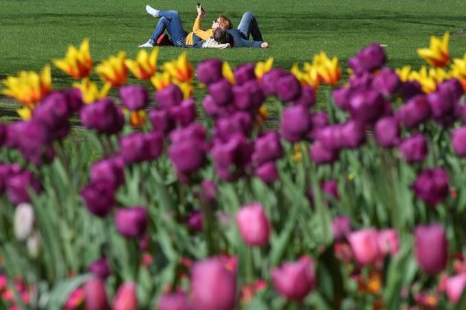 Equinócio de Primavera – Início da Primavera