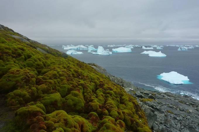 Aquecimento global e derretimento de calotas na Antártica