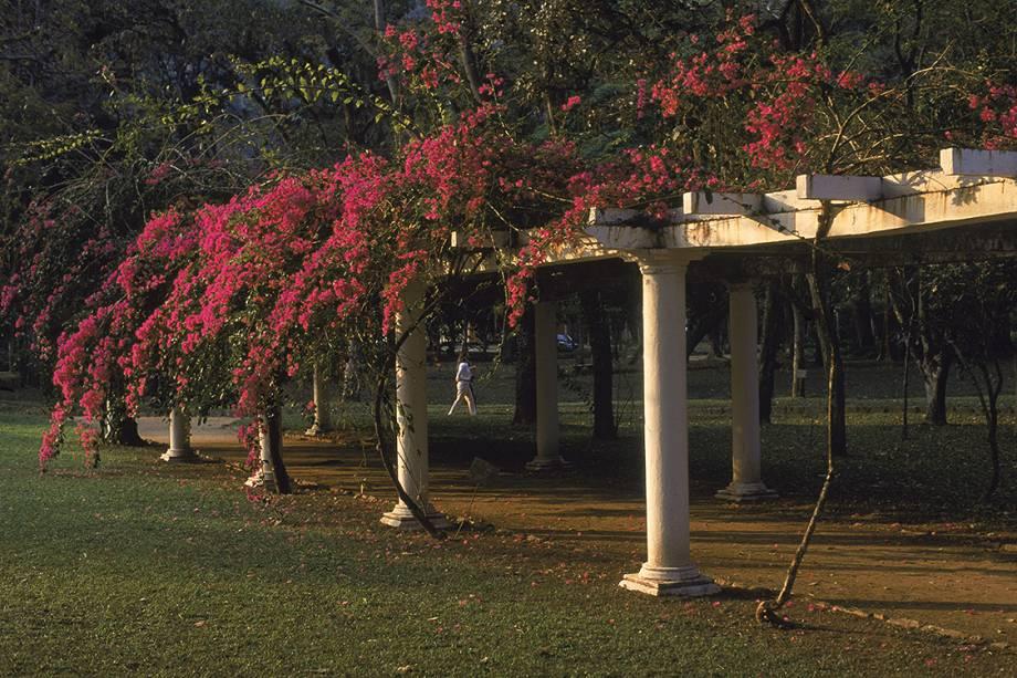Caramanchão no Jardim Botânico do Rio de Janeiro.