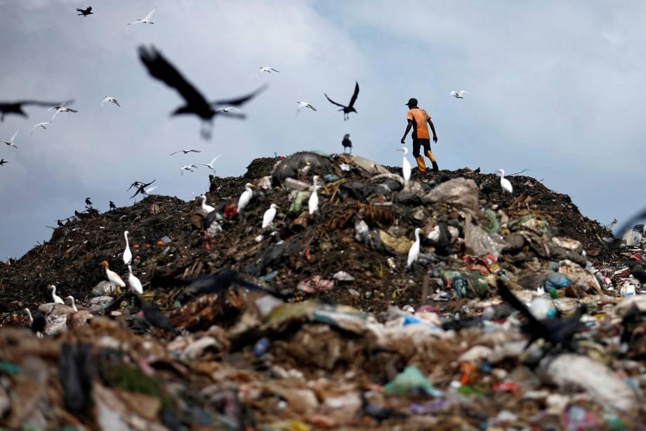 Homem coleta material para reciclagem em um lixão em Colombo, no Sri Lanka - 09/06/2017