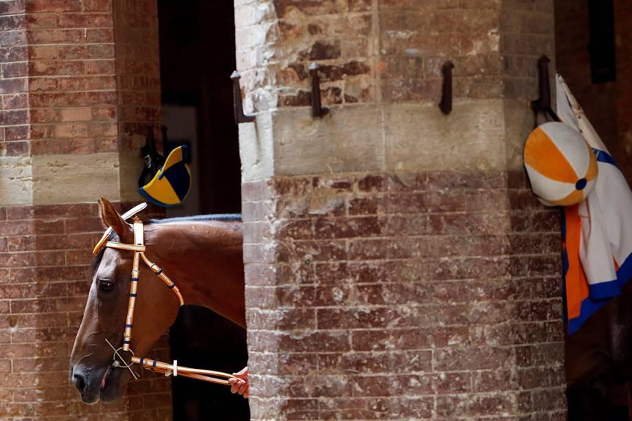 Cavalos são preparados para a corrida Palio Horse Race, em Siena, na Itália - 30/06/2017