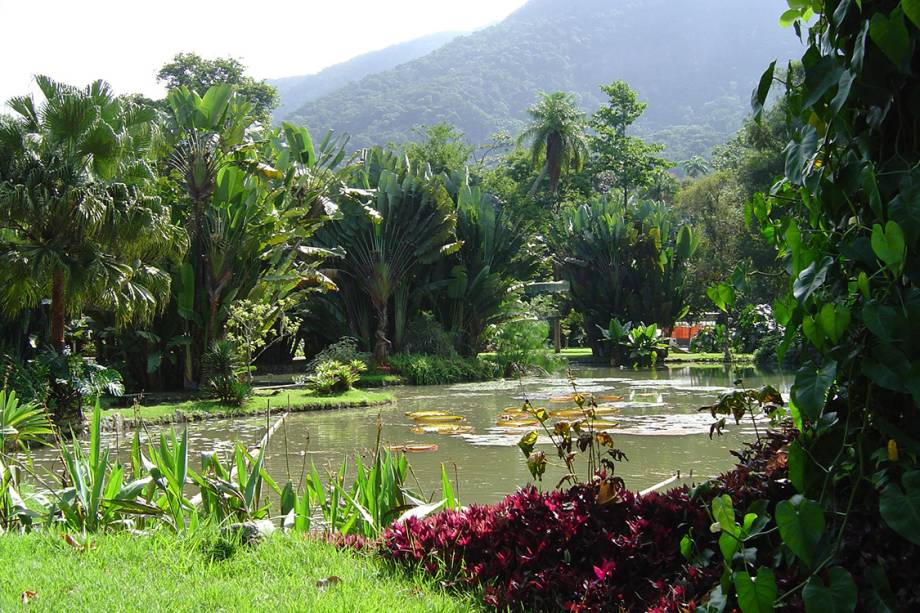 Lago Frei Leandro, no Jardim Botânico.