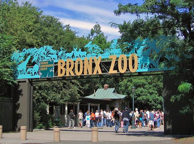 os melhores zoológicos do planeta