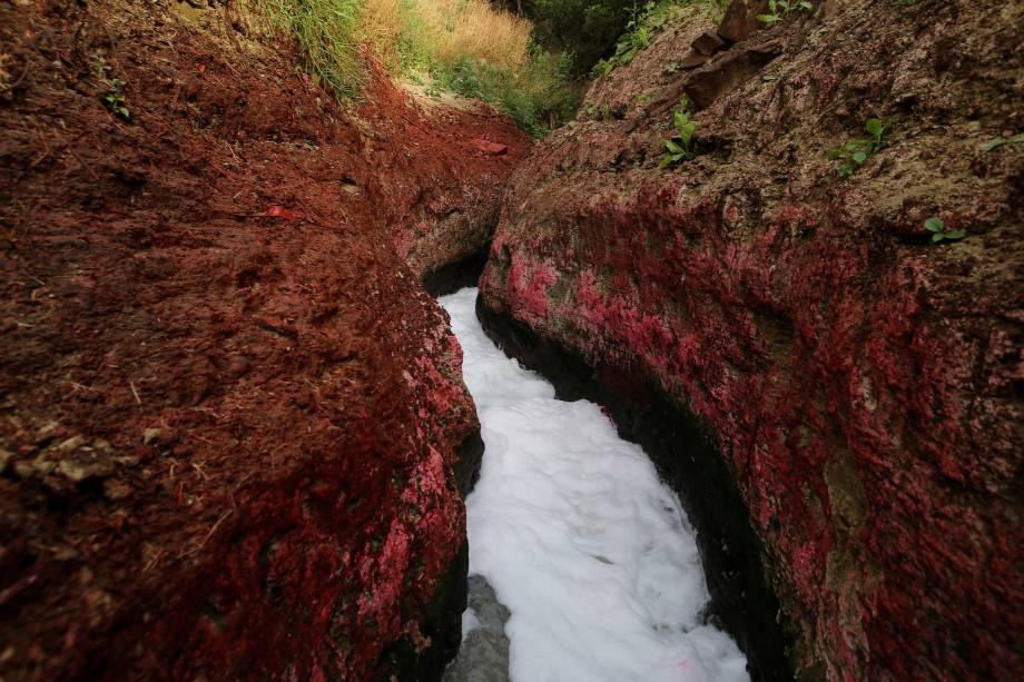O esgoto não tratado flui de um dreno aberto para o rio Ganges em Mirzapur.