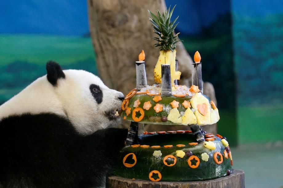A panda gigante Yuan Zai ganha um bolo  com frutas congeladas para celebrar seu aniversário de 4 anos no zoológico de Taipei, na Tailândia - 06/07/2017