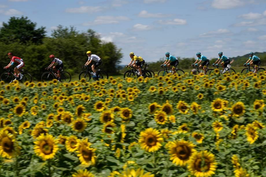 Competidores atravessam um campo de girassóis durante a segunda etapa da 104ª edição do Tour de Franceentre Mondorf- Les-Bains e Vittel, na França - 04/07/2017