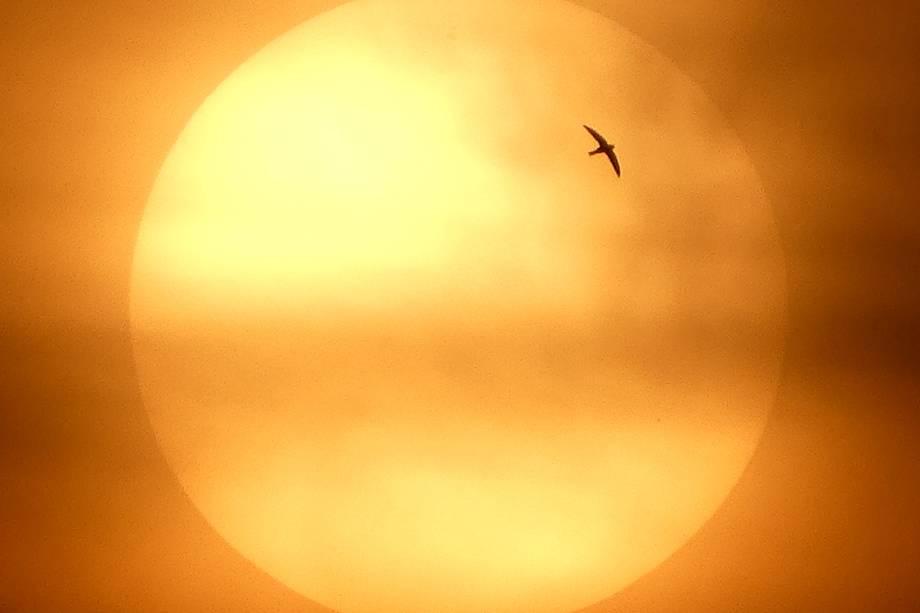Fotógrafo captura pôr-do-sol em Jacarta, na Indonésia - 07/07/2017