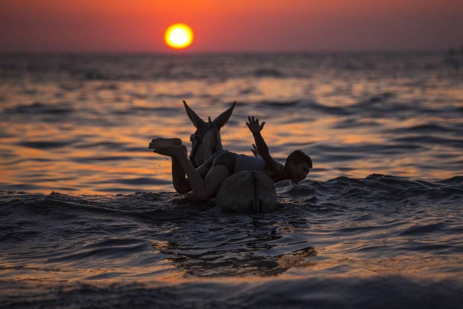 Menino brinca com um burro no mar ao por do sol na cidade de Gaza, no território palestino - 03/07/2017