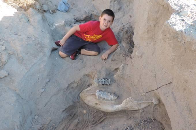 Garoto descobre sem querer fósseis de cerca de 1,2 milhão de anos
