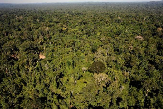 Governo volta a autorizar a exploração mineral em área protegida da Amazônia