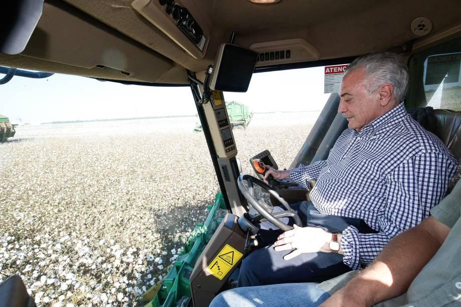 Presidente Michel Temer acompanha trabalhadores durante colheita de algodão em Lucas do Rio Verde (MS) - 11/08/2017