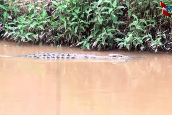 Ataques de crocodilos em Ruanda mataram 7 pessoas em agosto