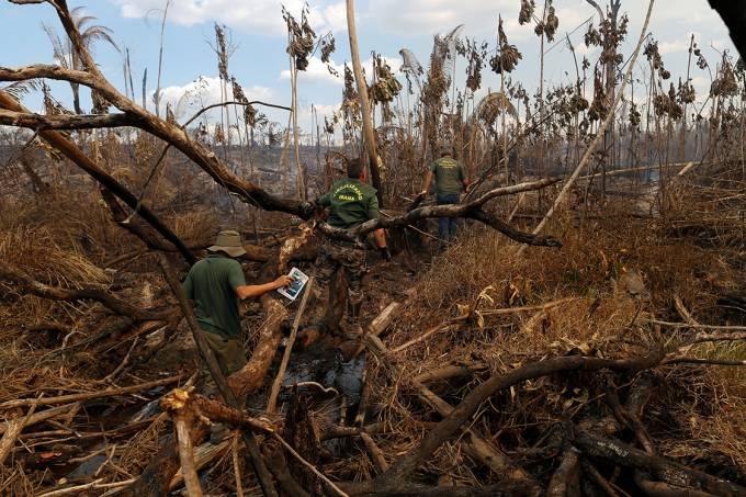 Agentes do Ibama inspecionam local durante a 'Operação Onda Verde' contra o desmatamento da Amazônia