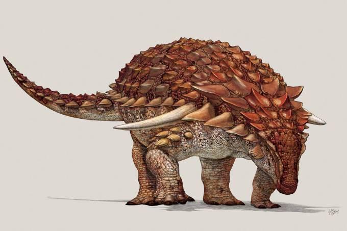 Dinossauro armadura