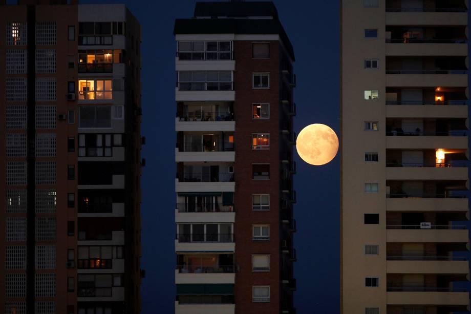 O nascer da lua é fotografado entre os prédios da cidade de Málaga, na Espanha, na noite do Eclipse parcial lunar - 07/08/2017