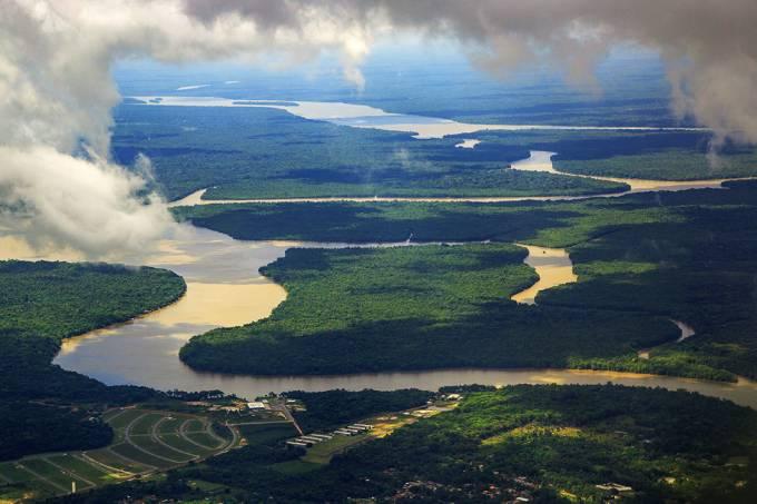 Floresta amazônica no estado do Pará