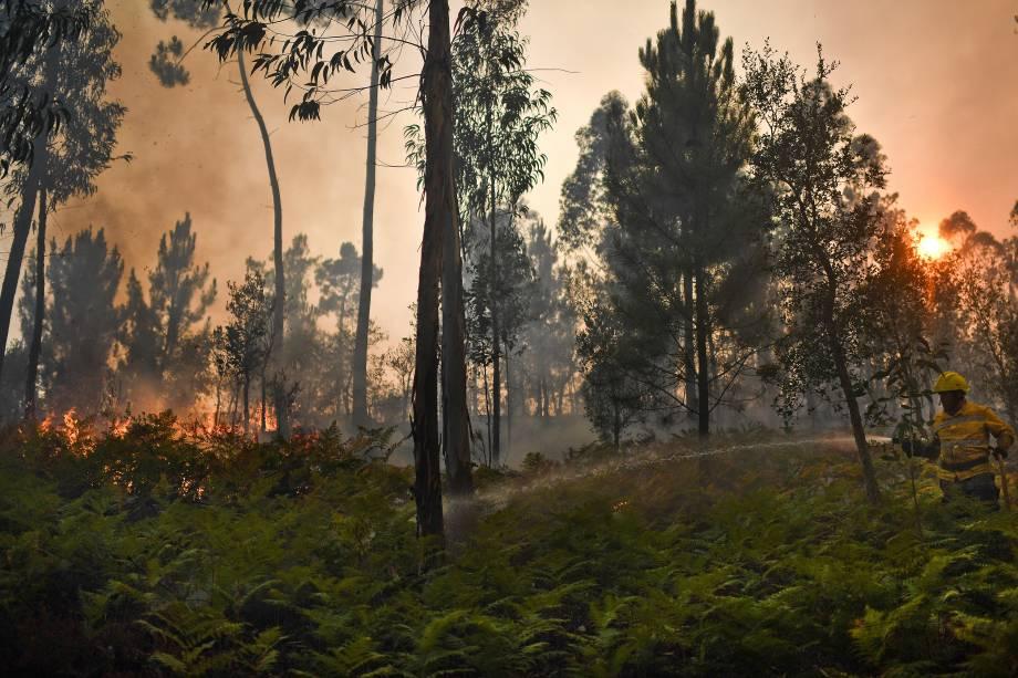 Bombeiros trabalham para conter as chamas do incêndio florestal na vila de Pucarica, em Abrantes, Portugal