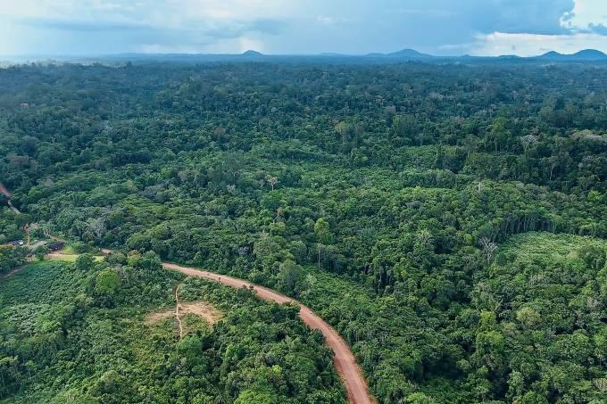 Natureza polêmica – A Renca, alvo do governo: 47000 quilômetros quadrados quase intocados