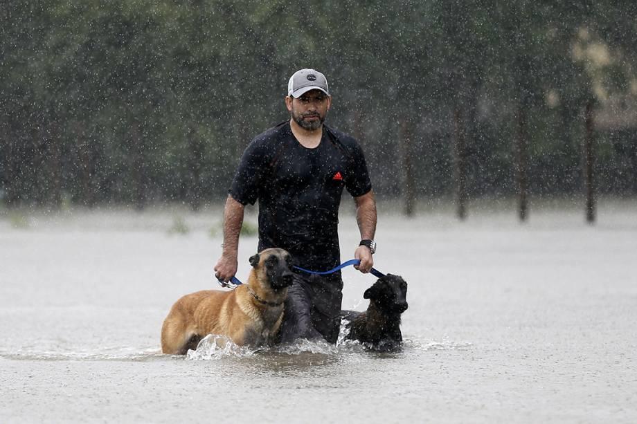 Homem resgata seus dois cachorros em meio à tempestade causada pelo furacão Harvey, no Texas