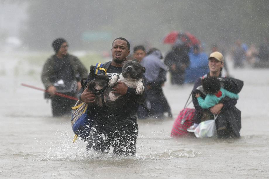 Homem resgata seu pitbull de tempestade que atingiu a costa leste dos Estados Unidos, trazida pelo furacão Harvey