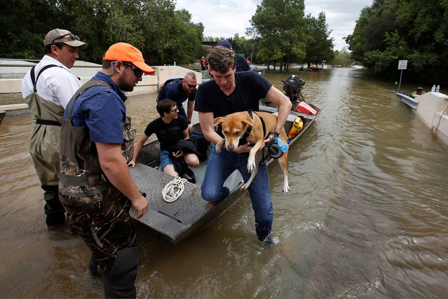 Resgate auxilia cachorro e seu dono a evacuarem área alagada por tempestade trazida pelo furacão Harvey, que atingiu estados da costa leste dos Estados Unidos