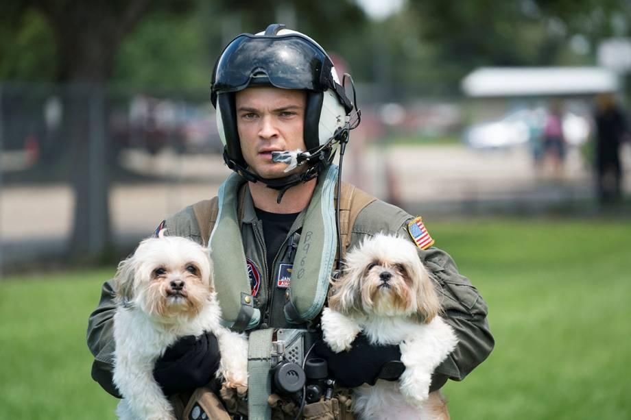 Cachorros são resgatados por membro da força aérea dos Estados Unidos, após furacão Harvey alagar cidades no Texas