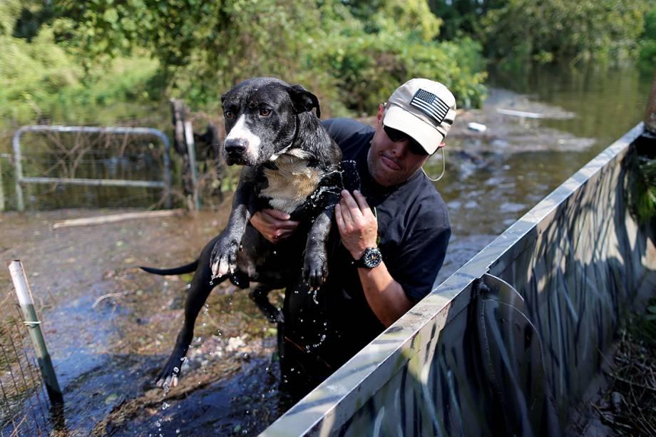 Homem resgata seu cachorro de tempestade que atingiu a costa leste dos Estados Unidos, trazida pelo furacão Harvey