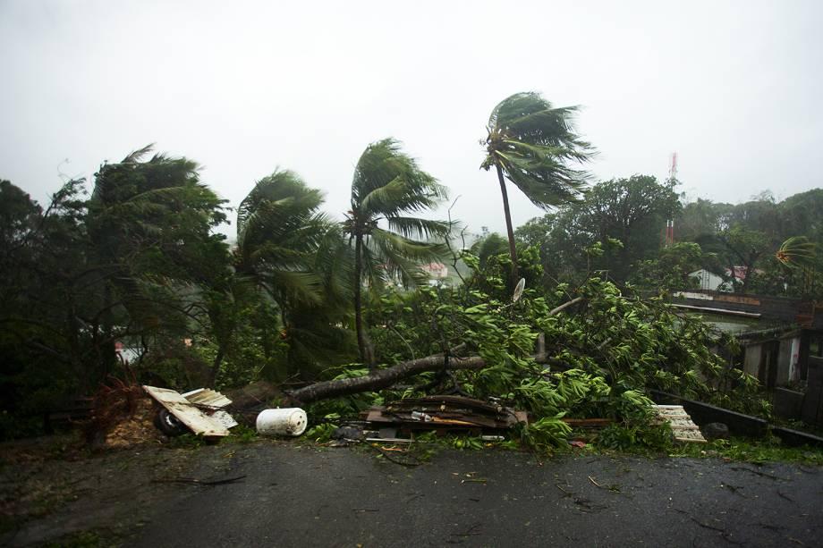 Furacão Maria atinge a cidade de Petit-Bourg na ilha francesa do Caribe de Guadalupe. A tempestade chegou à categoria 5, considerada potencialmente catastrófica, e atingiu outras ilhas caribenhas como Dominica, em Porto Rico - 19/09/2017