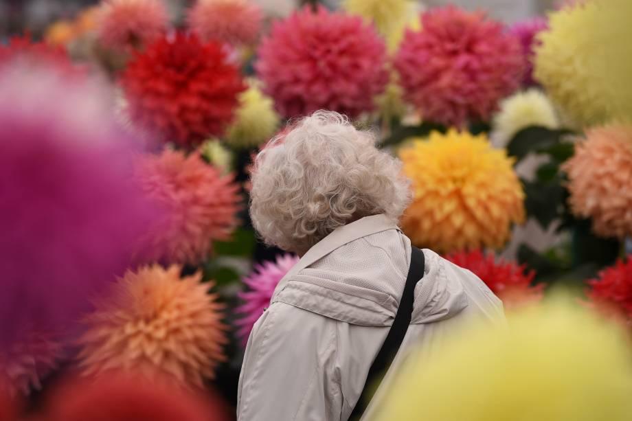 Visitante observa arrenjos com flores de dália em exibição no primeiro dia do Harrogate Autumn Flower Show realizado no norte da Inglaterra - 15/09/2017