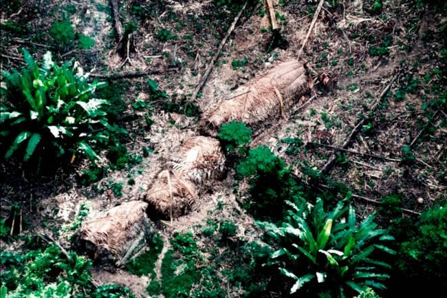 Malocas de índios isolados avistadas em 2011 pela FUNAI