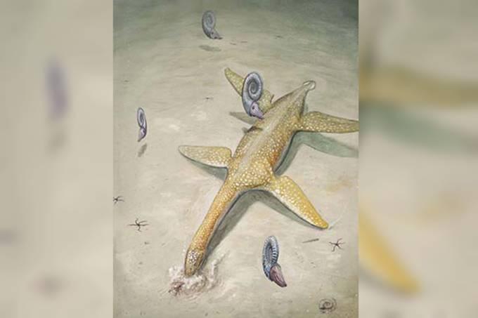 Nova espécie de réptil marinho jurássico