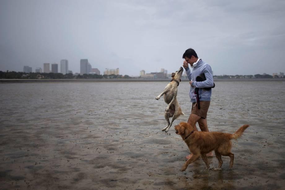 Homem brinca com seus cachorros em Hillsborough Bay antes da chegada do furacão Irma, em Tampa, na Flórida (EUA) - 10/09/2017