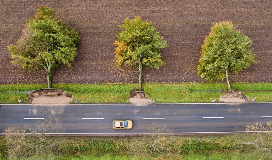 A tempestade 'Xavier' que passou pela Alemanha na última quinta-feira arrancou árvores com os fortes ventos, prejudicou casas e o funcionamento de transportes como trens e aviões, na cidade de Hildesheim - 06/10/2017