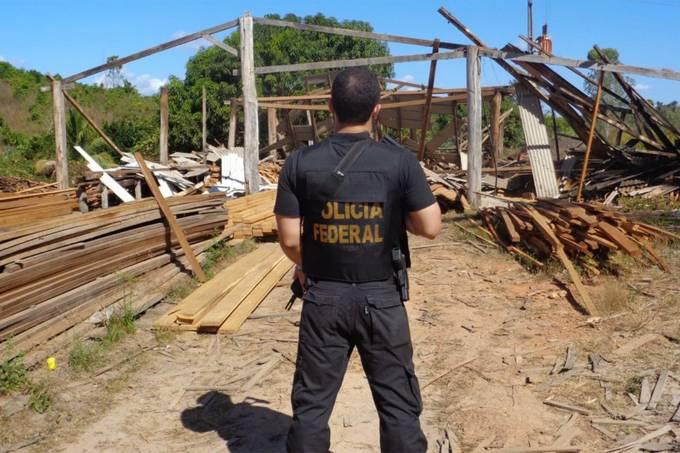operacao-pf-madeira-ilegal-2
