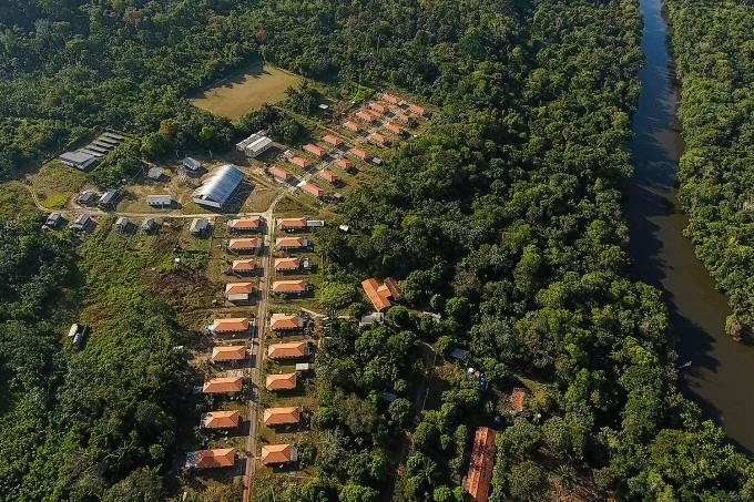 RENCA-RESERVA EXTRATIVISTA-  Amazônia – Castanhas-do-Pará