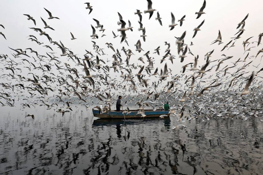 Um homem é visto em meio a neblina da manhã enquanto alimenta as gaivotas no Rio Yamuna, em Nova Deli, capital da Índia - 17/11/2017