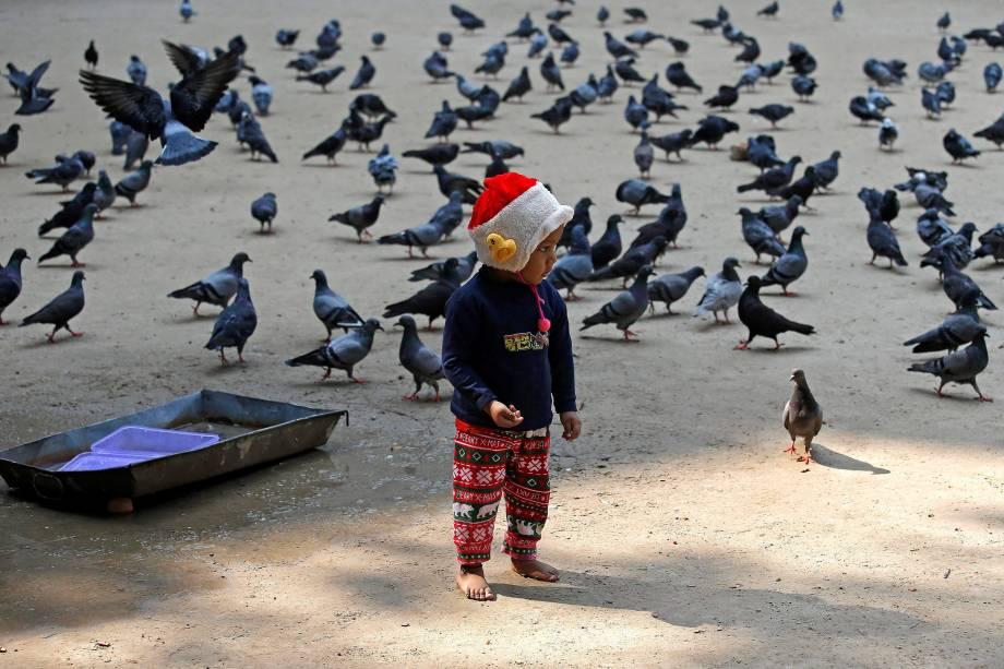 Menino alimenta pombos em uma manhã fria na cidade de Calcutá, na Índia - 29/11/2017