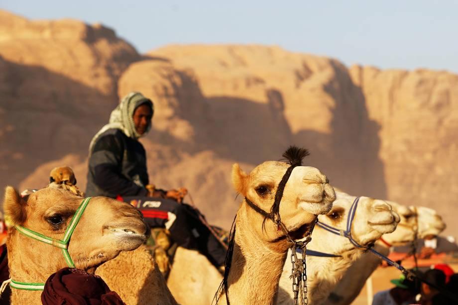 Camelos participam de corrida em Wadi Rum, na Jordânia - 02/11/2017
