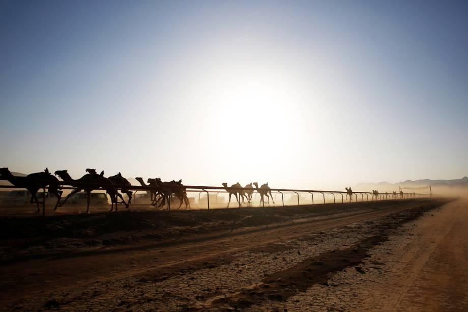 Foi construída uma pista para a realização de corrida para camelos, anualmente realizada em Wadi Rum, na Jordânia. Competidores de diversos países do Oriente Médio participam do evento - 02/11/2017
