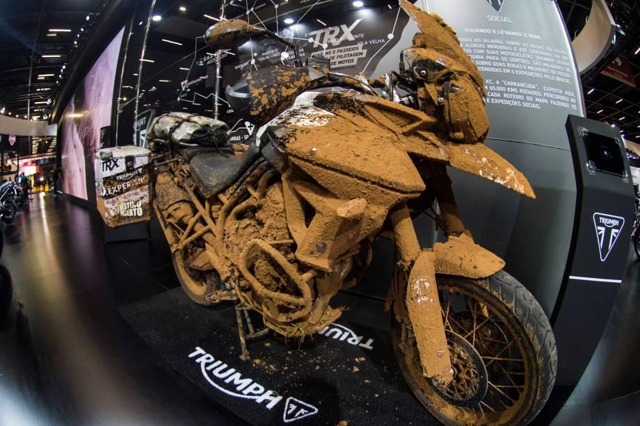 Triumph Tiger XR