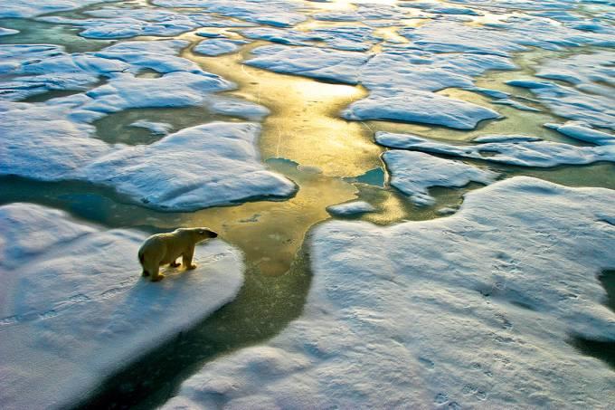 Desolação – Os cientistas concluíram que a temperatura média no Ártico aumentou seis vezes mais que no resto da Terra