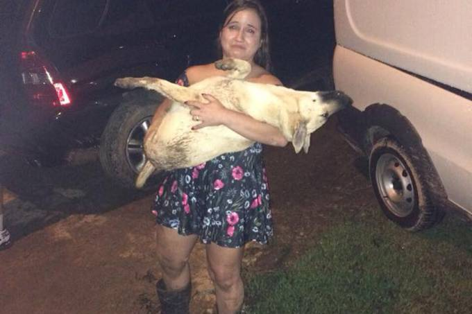 Mulher posta foto com cadela morta