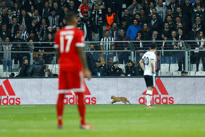 Bayern de Munique vs Besiktas