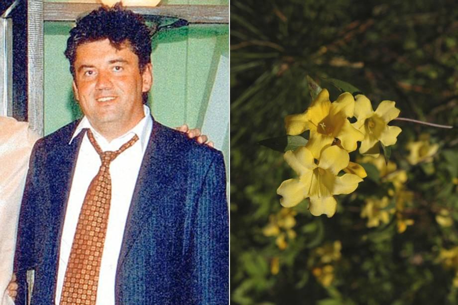 Alexander Perepilichny, executivo russo, envenenado por flor venenosa Gelsemium
