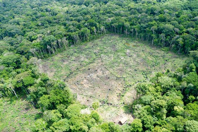 A Amazônia é o novo Rio
