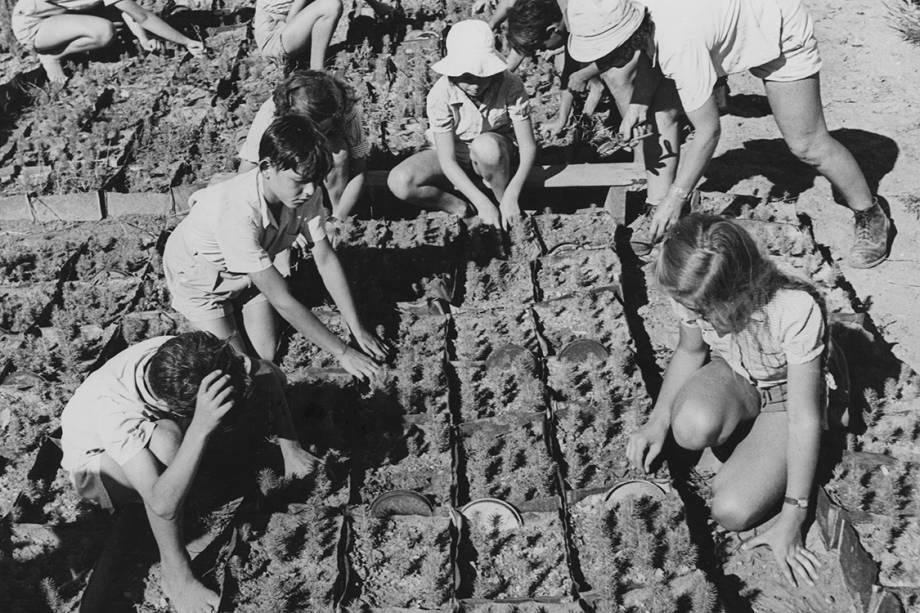 Crianças ajudam agricultores a plantar sementes - 1950